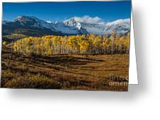 Colorado Fall II Greeting Card