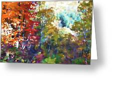 Colorful Autumn Trees In Forest Greeting Card