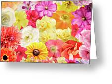 Colorful Floral Background Greeting Card