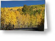 Colors Of Colorado #2 Greeting Card