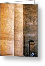Columns With Hieroglyphs Depicted Horus At The Temple Of Edfu Greeting Card by Sami Sarkis