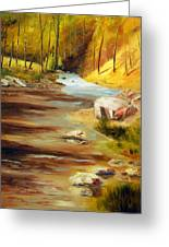 Cool Mountain Stream Greeting Card