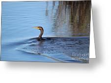 Cormorant In The Marsh Greeting Card