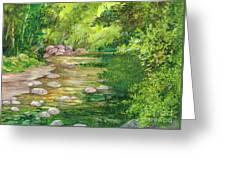 Coromandel Creek Greeting Card