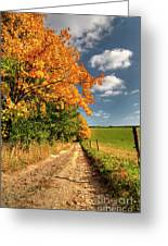 Country Road And Autumn Landscape Greeting Card