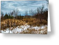 Country Winter 3 Greeting Card