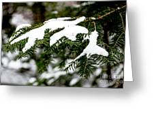 Country Winter 10 Greeting Card