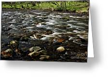 Creek, Smoky Mountains, Tennessee Greeting Card