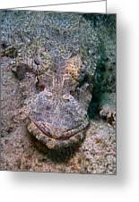 Crocodile Fish Greeting Card by Joerg Lingnau