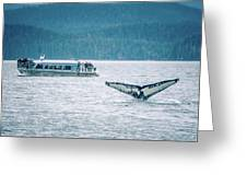 Cruise Ship Pier 91 In Seattle Washington Greeting Card