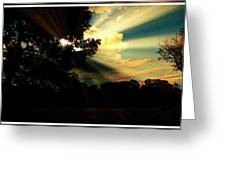 Cumulus Cloud At Dusk, Tree Silhouettes Greeting Card