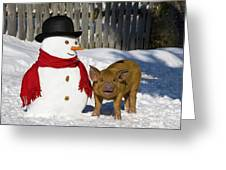 Curious Piglet And Snowman Greeting Card