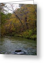 Current River 8 Greeting Card by Marty Koch