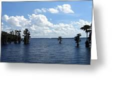 Cypress Cove Greeting Card