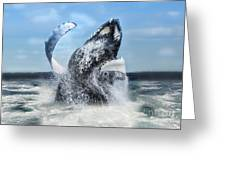 Dances With Whales Greeting Card
