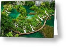 Dave Ruberto - Wonderful Green Nature Waterfall Landscape  Greeting Card