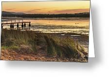 Dawn Waterscape And Wharf Greeting Card
