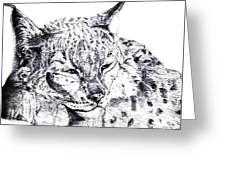 Deer Tiger Greeting Card