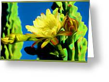 Desert Beauty Greeting Card