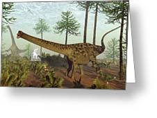 Diplodocus Dinosaurs Among Araucaria Trees - 3d Render Greeting Card