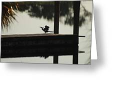 Dock Bird Greeting Card