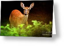 Doe Eyes Greeting Card