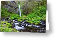 Dry Creek Falls Greeting Card