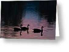 Ducks All In A Row Greeting Card