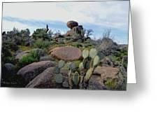 Dusk In The Desert Greeting Card