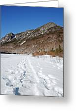 Eagle Cliff  - White Mountains New Hampshire Usa Greeting Card