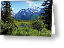 Eagle River- Alaska Greeting Card