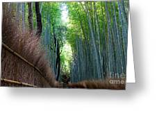 Earth Moments Gallery I Greeting Card