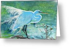 Egret In The Summer Breeze  Greeting Card