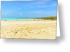 El Garrapatero Beach On Santa Cruz Island In Galapagos. Greeting Card