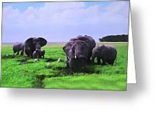 Elephants  Greeting Card