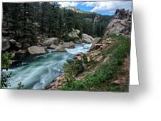 Eleven Mile Canyon Greeting Card