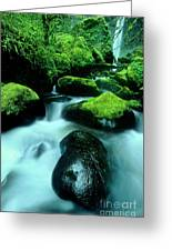 Elowah Falls Columbia River Gorge National Scenic Area Oregon Greeting Card