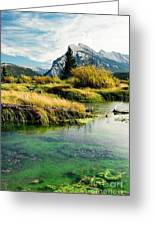 Emerald Waters Greeting Card