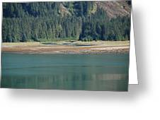Endicott Glacier Area  Greeting Card