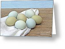 Exotic Colored Chicken Eggs Greeting Card