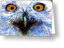 Eyes Of Owls No. 15 Greeting Card