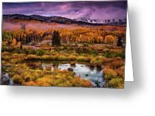 Fall Along Kebler Greeting Card