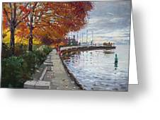 Fall In Port Credit On Greeting Card
