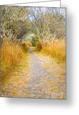 Fall Pathway 3 Greeting Card