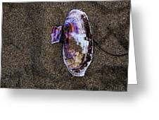 Fallen Butterfly Greeting Card