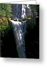 Falls Creek Falls Greeting Card