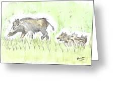 Feral Hogs Greeting Card
