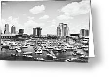Festive Tampa Bay Greeting Card