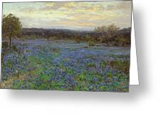 Field Of Bluebonnets At Sunset Greeting Card
