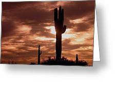 Film Homage Orson Welles Saguaro Cacti The Other Side Of The Wind Carefree Arizona 2004 Greeting Card